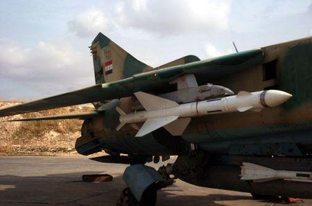 Tong thong Assad: My se lam tat ca de lat do chinh phu Syria - Anh 2