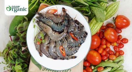Hien tuong san pham organic 'xin' chay hang o Co.opmart - Anh 1