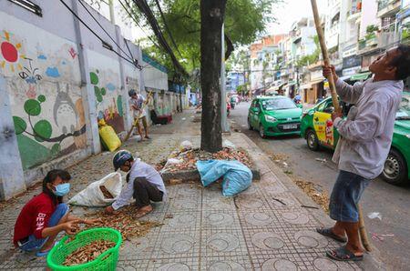 Nghe doc la bac nhat Sai Thanh - Anh 3