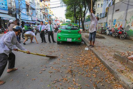 Nghe doc la bac nhat Sai Thanh - Anh 7