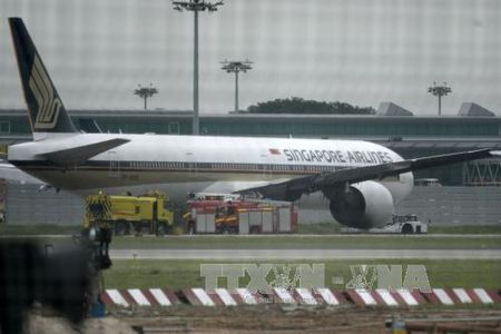 Singapore Airlines lo rong vi canh tranh khoc liet - Anh 1