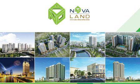 Novaland phat hanh rieng le hon 33 trieu cp, hoan doi no gia 40.867 dong/cp - Anh 1