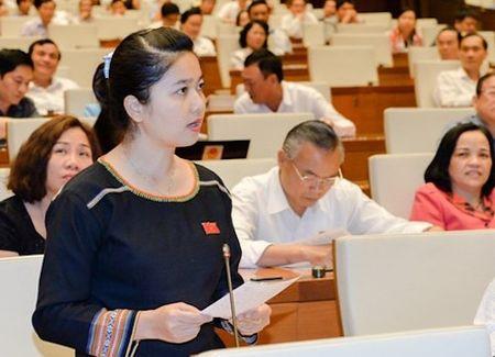 Dai bieu Quoc hoi lo ngai Tay Nguyen bi sa mac hoa - Anh 1
