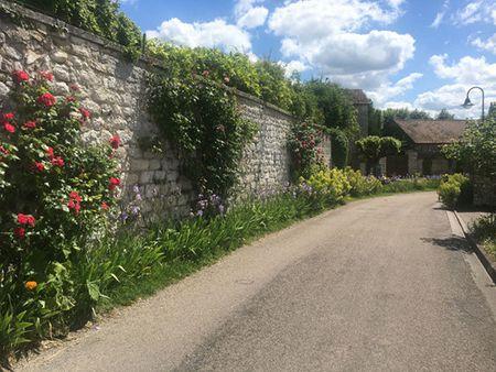 Givenchy & khu vuon cua danh hoa Monet - Anh 2