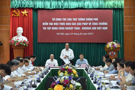 Loi nhuan ca nghin ty, TKV van ton 9 trieu tan than - Anh 1