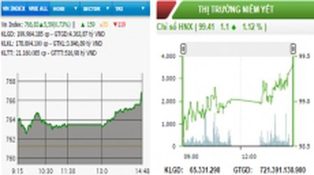Hai san cung tang, VNXALL-Index can moc 1.126 diem - Anh 1