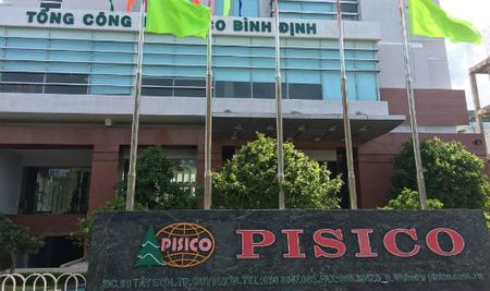 Mua co phan thoai von Nha nuoc tai Pisico Binh Dinh: 'La lung' chuyen chon nha dau tu... - Anh 1