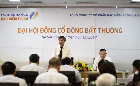 Pho chu tich Samsung Fire & Marine Insurance tham gia HDQT cua PJICO - Anh 1