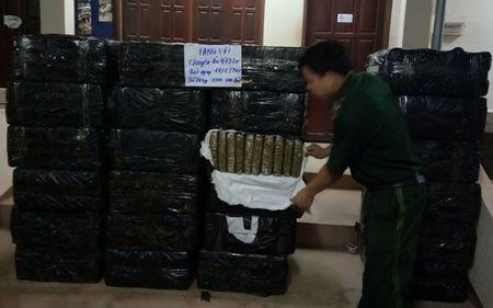Can canh 1.000 banh can sa suyt lot vao Viet Nam - Anh 4