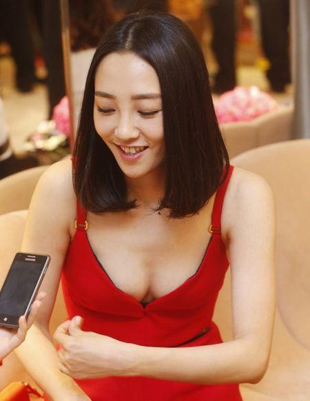 4 my nhan bi hat hui vi scandal ngoai tinh - Anh 5
