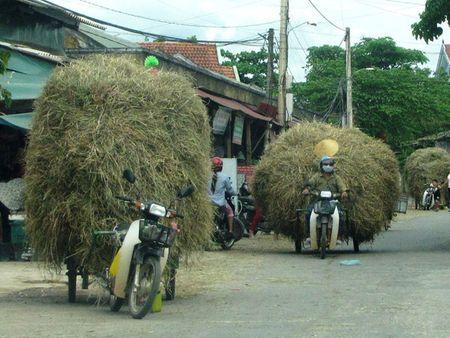 'Thu phu' mo to keo - Anh 1