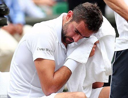 Danh bai Cilic, Federer vo dich Wimbledon lan thu 8 - Anh 1
