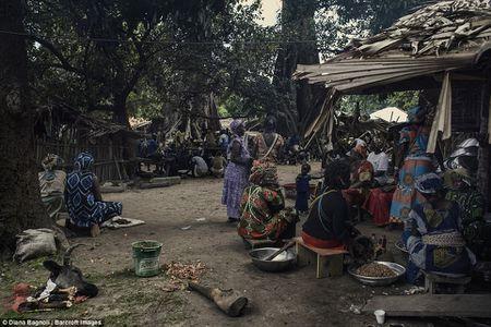 Nam thanh nien Senegal song trong rung mot thang de duoc ket hon - Anh 11