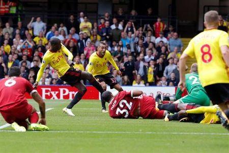 Hang thu qua te, fan Liverpool lien tuc cau cuu Van Dijk - Anh 1