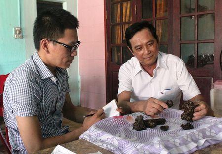 Quang Binh: Mo thit de, phat hien 7 vat the nghi la 'duong bao' quy hiem - Anh 1