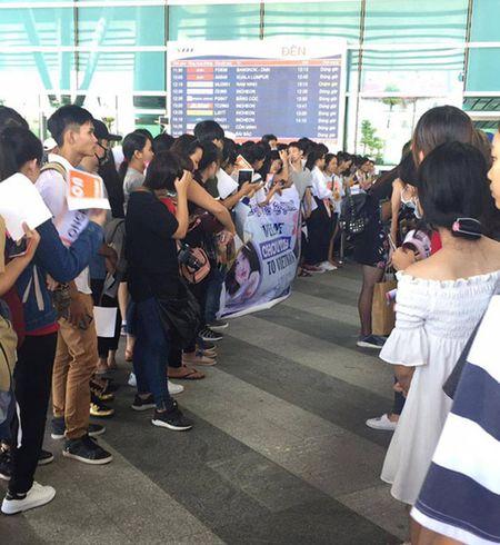Fan Viet qua khich so mo, dung cham nu than tuong Han - Anh 1