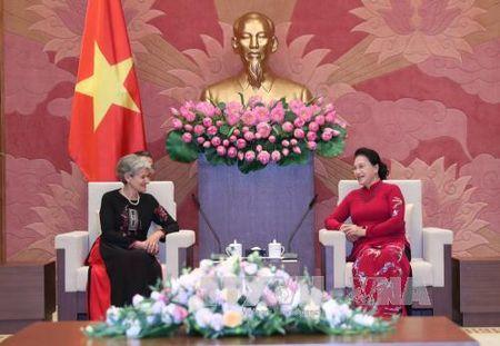 Chu tich Quoc hoi tiep Tong Giam doc UNESCO - Anh 1