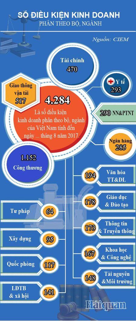 Infographics: 4.284 yeu cau, dieu kien dau tu kinh doanh theo cac bo, nganh - Anh 1