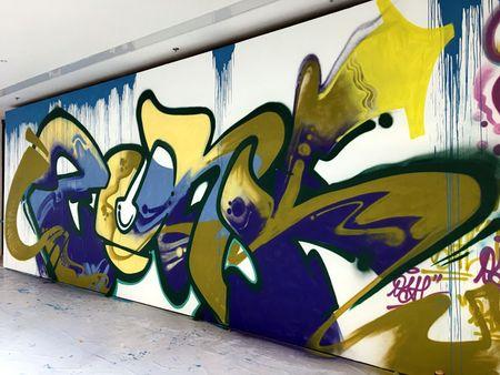 Nghe si Graffity Nhat ban 'tung hoanh' tai Ha Noi voi nhung buc tranh khong lo - Anh 5