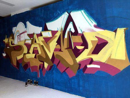 Nghe si Graffity Nhat ban 'tung hoanh' tai Ha Noi voi nhung buc tranh khong lo - Anh 8
