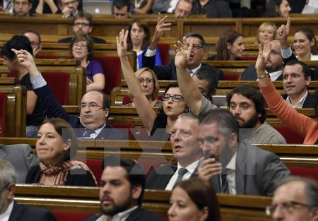 Tay Ban Nha se truy to lanh dao Catalonia vi to chuc trung cau y dan - Anh 1