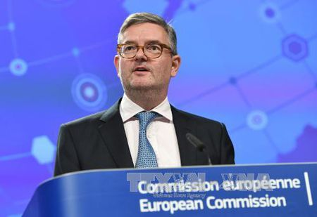 EU canh bao 'nguy co hien huu' IS tai tro hoat dong khung bo tai chau Au - Anh 1