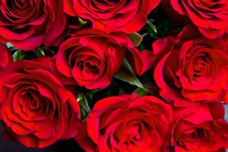 Quiz: Doan ten quoc gia qua quoc hoa - Anh 3