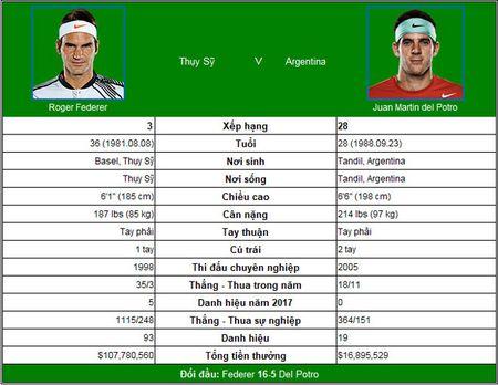 TRUC TIEP tennis Federer - Del Potro: 'Tau toc hanh' gap vat can lon - Anh 3