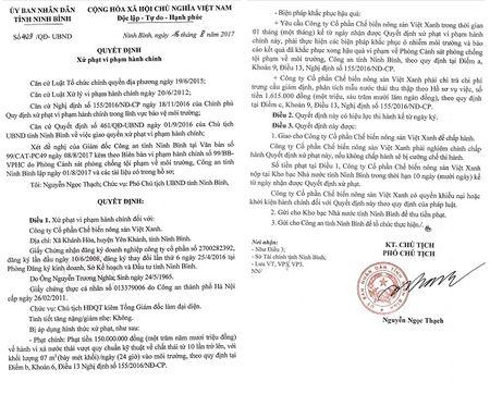 Yen Khanh (Ninh Binh): Cong ty CP Che bien nong san Viet Xanh xa thai gay o nhiem - Anh 4