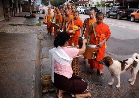 Hanh trinh Luang Prabang: Co do ngu trong may - Anh 3