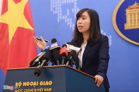 Viet Nam len tieng vu My len ke hoach tuan tra o Bien Dong - Anh 1