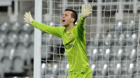 Danh sach 'hao thu' cua Arsenal tham du Europa League 2017/2018 - Anh 3
