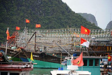 Can canh: Ngu dan Quang Ninh lap thiet bi 'khung' chuan bi ra khoi - Anh 1