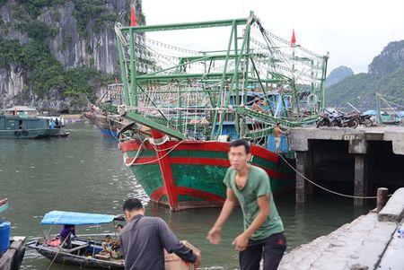 Can canh: Ngu dan Quang Ninh lap thiet bi 'khung' chuan bi ra khoi - Anh 6