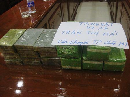 Thanh Hoa: Bat giu xe khach cho 15 banh heroin va 5kg ma tuy da - Anh 2