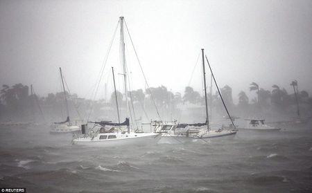 Sieu bao Irma can quet Florida - Anh 11