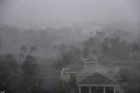 Sieu bao Irma can quet Florida - Anh 1