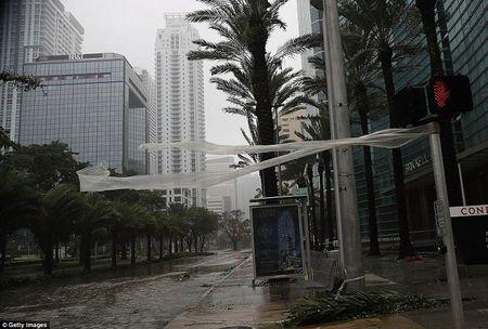 Sieu bao Irma can quet Florida - Anh 4