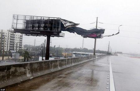 Sieu bao Irma can quet Florida - Anh 9