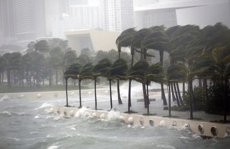 Truyen thong My bi chi trich vi 'qua nhiet tinh' khi dua tin bao Irma - Anh 2