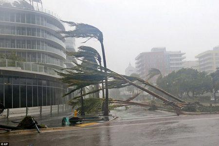 Bao Irma can quet, Tong thong My tuyen bo tham hoa o Florida - Anh 1