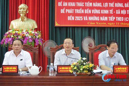 Den nam 2025, co khoang 77.700 ha rung nguyen lieu phuc vu che bien - Anh 1