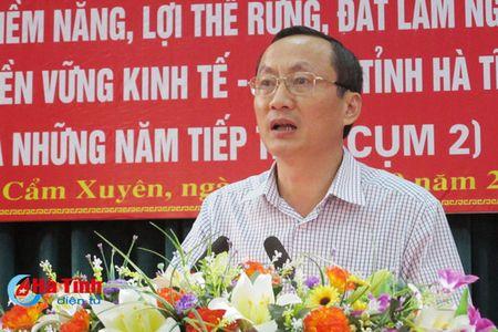 Den nam 2025, co khoang 77.700 ha rung nguyen lieu phuc vu che bien - Anh 7