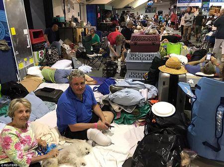 'Quai vat' Irma cuong no khien Florida (My) tan hoang - Anh 13