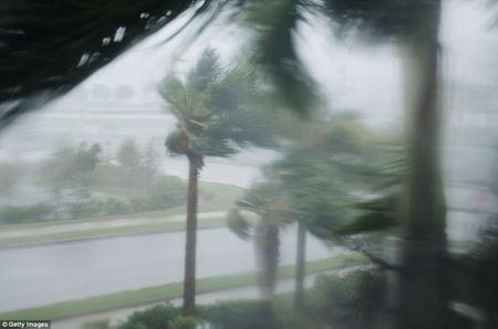 'Quai vat' Irma cuong no khien Florida (My) tan hoang - Anh 1