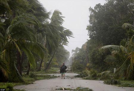 'Quai vat' Irma cuong no khien Florida (My) tan hoang - Anh 4