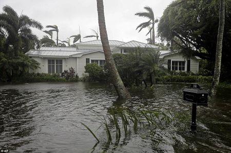 'Quai vat' Irma cuong no khien Florida (My) tan hoang - Anh 5