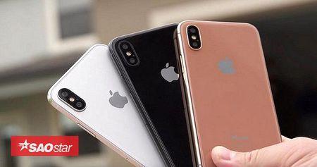 Lo cau hinh RAM va camera cua iPhone X, iPhone 8/8 Plus: Nang cap tu iPhone 7, camera quay 4K/60fps - Anh 1