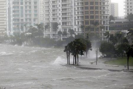 Bao tu than Irma do bo len Florida, gay thuong vong cho nguoi My - Anh 4