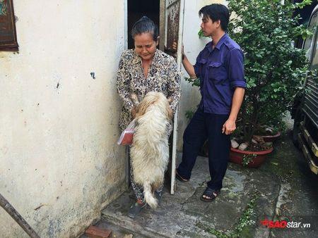 Doi truong doi bat cho tha rong: 'Nhieu chu cho chui boi, tru eo con chung toi khi sinh ra bi di tat…' - Anh 5